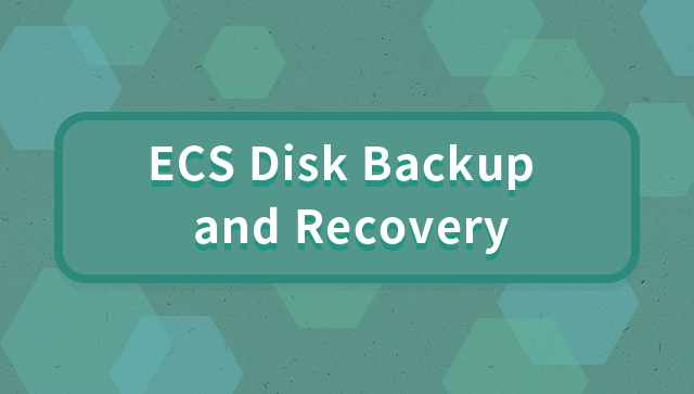 ECS Disk Backup and Recovery